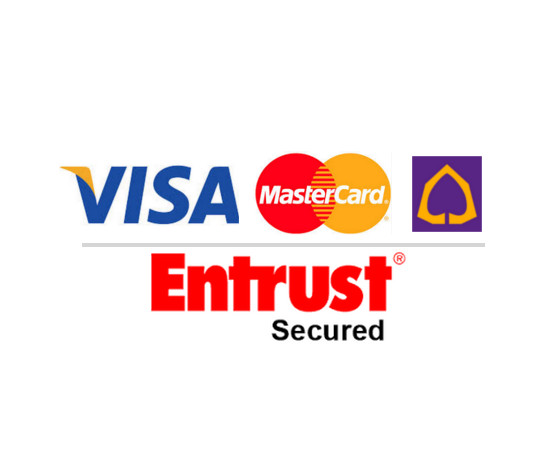 payment for web hosting /domain name by Credit card payment- Visa, Master